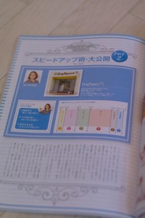 IMGP6121.jpg