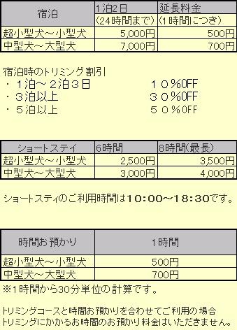 stay20110516.jpg